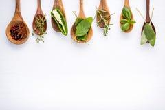 Różnorodny pikantność i ziele na drewnianym tle Mieszkanie pikantność nieatutowi składniki rozmaryny, macierzanka, oregano, mędrz obraz stock