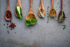 Różnorodny pikantność i ziele w drewnianych łyżkach Mieszkanie pikantność nieatutowi składniki chili, peppercorn, rosemarry, tymi zdjęcie stock