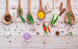 Różnorodny pikantność i ziele w drewnianych łyżkach Mieszkanie pikantność nieatutowi składniki chili, peppercorn, rosemarry, tymi zdjęcia royalty free