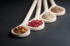 Różnorodny pikantność w drewnianych łyżkach zdjęcie royalty free