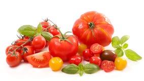 Różnorodny pomidory obraz royalty free