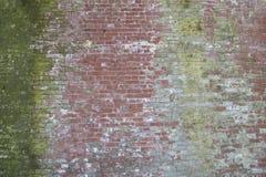 Różnorodny stary czerwony ściana z cegieł z zielonym mech zdjęcia stock