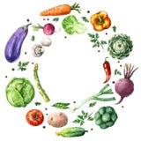 Różnorodnych warzyw Round rama ilustracji