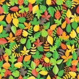 Różny liścia tło Fotografia Stock