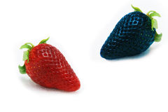 Różny niż spoczynkowej samotnej błękitnej truskawki Pojęcie dla genetycznie zmodyfikowanego jedzenia fotografia royalty free