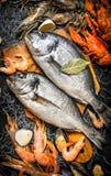 Różny owoce morza z pikantność na sieci rybackiej Fotografia Stock