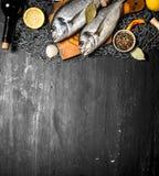 Różny owoce morza z pikantność na sieci rybackiej Obraz Stock