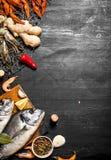 Różny owoce morza z pikantność na sieci rybackiej Obraz Royalty Free