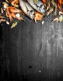 Różny owoce morza z pikantność na sieci rybackiej Zdjęcie Royalty Free