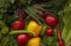 Różny surowych warzyw tło zdrowego żywienia Żółci pieprze, czerwoni pomidory, rzodkiew, zielona sałatka Fotografia Royalty Free