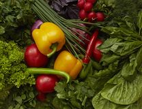 Różny surowych warzyw tło zdrowego żywienia Żółci pieprze, czerwoni pomidory, rzodkiew, zielona sałatka Zdjęcia Royalty Free