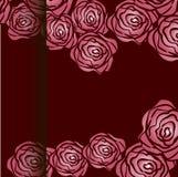 różową różę również zwrócić corel ilustracji wektora Zdjęcia Stock