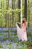 Różowa czarodziejka w bluebells lasowych fotografia royalty free