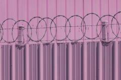Różowa drut kolczasty ściana Obraz Royalty Free