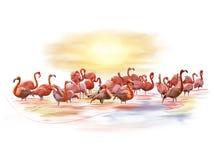 Różowa flaming akwarela ilustracja wektor