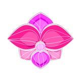Różowa i fiołkowa orchidea obrazy royalty free