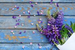 Różowa i purpurowa lupine kwiatów granica Urodziny, Macierzysty ` s dzień, walentynki ` s dzień, Marzec 8, Ślubna karta lub zapro Zdjęcia Royalty Free