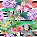 Różowa kamelia Kwiecisty botaniczny kwiat Bezszwowy tło wzór ilustracja wektor