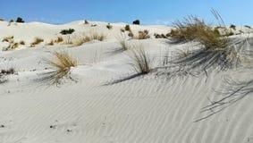 różowa piasek diuna w południowo-zachodni wybrzeżu Sardinia fotografia stock