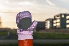 Różowa rękawiczka na górze drewnianego słupa obrazy stock