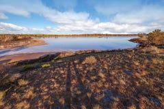 Różowa Salt Lake Zimnotrwała panorama, Australia Fotografia Stock