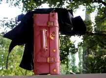 Różowa walizka z czarną kurtką Zdjęcia Stock