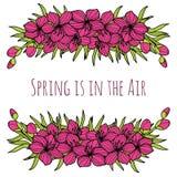 Różowa wiosny Sakura kwiatu rama dla powitań, ślubne karty, zaproszenia Zdjęcia Royalty Free