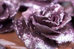 Różowe błyskotliwość róże Zdjęcie Royalty Free