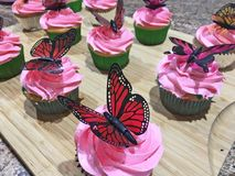 Różowe babeczki z motylami na wierzchołku zdjęcie royalty free