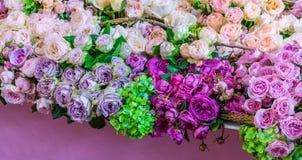 Różowe białe i purpurowe róże obraz royalty free
