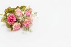 Różowe i białe róże obraz stock