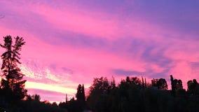 różowe niebo nocą Zdjęcie Stock