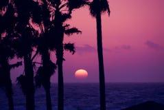 różowe niebo słońca Obrazy Royalty Free