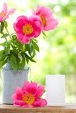 Różowe peonie w metal wazie i opróżniają kartę dla listu Zdjęcia Royalty Free