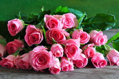 różowe róże Fotografia Royalty Free