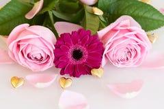 Różowe róże i gerbera z złotymi sercami i liśćmi Fotografia Stock