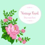 Różowe róże na błękitnym tle Rama z copyspace dla twój teksta Dekoracyjni elementy dla kart, prezenty, rzemiosła Może używać dla  Zdjęcia Royalty Free