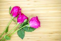 Różowe róże na drewnianym tle Zdjęcie Stock