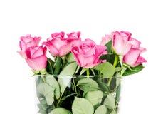 Różowe róże w wazie odizolowywającej na białym tle fotografia stock