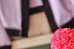 różowe tła rose Fotografia Stock