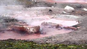 Różowego garnka Gorąca wiosna Dekatyzuje w Yellowstone parka narodowego materiale filmowym zbiory wideo