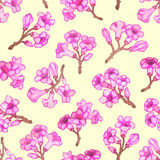 Różowego rododendronowego okwitnięcia bezszwowy wzór również zwrócić corel ilustracji wektora Obrazy Royalty Free