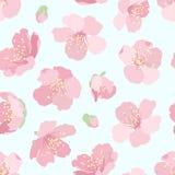 Różowego Sakura czereśniowego drzewa okwitnięcia bezszwowy wzór ilustracji