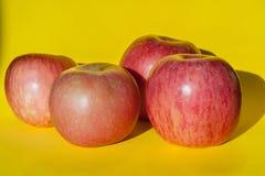 Różowi dojrzali jabłka na żółtym tle Zdjęcie Stock