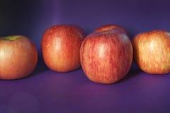 Różowi dojrzali jabłka na purpurowym tle Zdjęcia Royalty Free