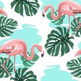 Różowi flamingi, błękitny jezioro, monstera liści wzór ilustracja wektor