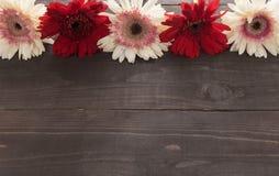 Różowi gerbera kwiaty są w wazie, na drewnianym tle Obrazy Royalty Free