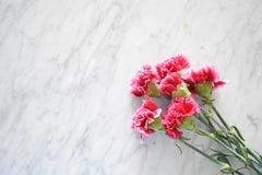 Różowi goździki na wykładają marmurem stół obrazy stock