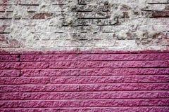 Różowi i biali ściana z cegieł fotografia royalty free