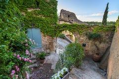 Różowi i biali kwiaty i ściana z zielonymi liśćmi Zdjęcia Royalty Free